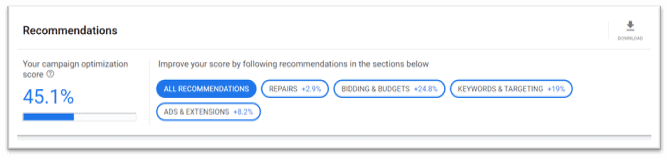 Google Ads Tips - Autogeneated in their console - showing 45% optimization score